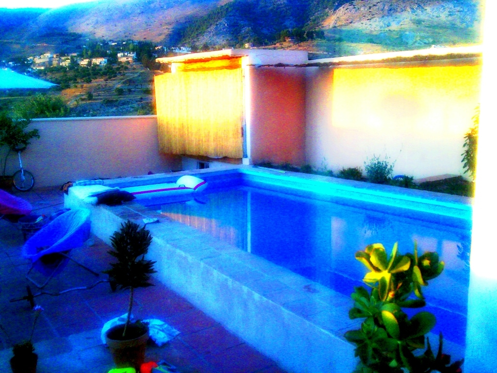 vista  desde el ventanal del salon : piscina y parque natural la Alfaguarra