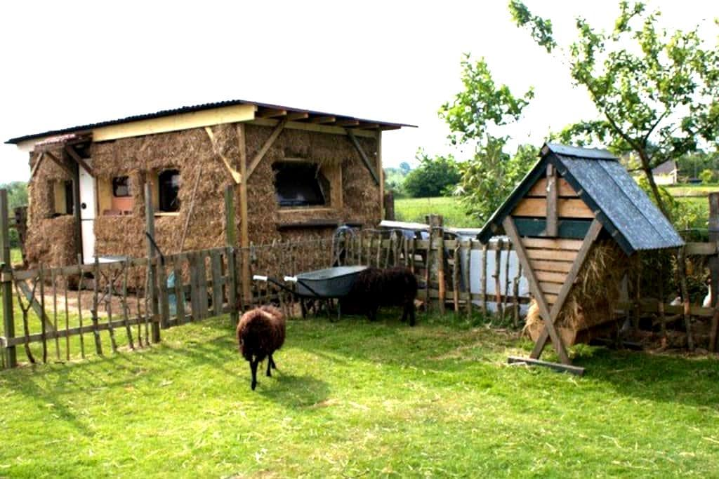 Private Tiny house en paille and B&B - La Carneille