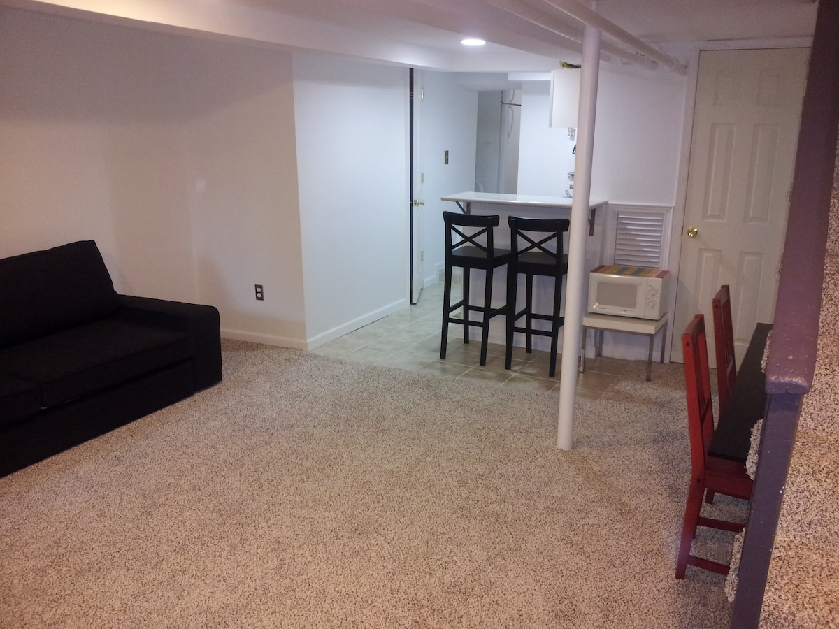 Main living area of basement apartment. Sofa pulls out into a comfy bed.
