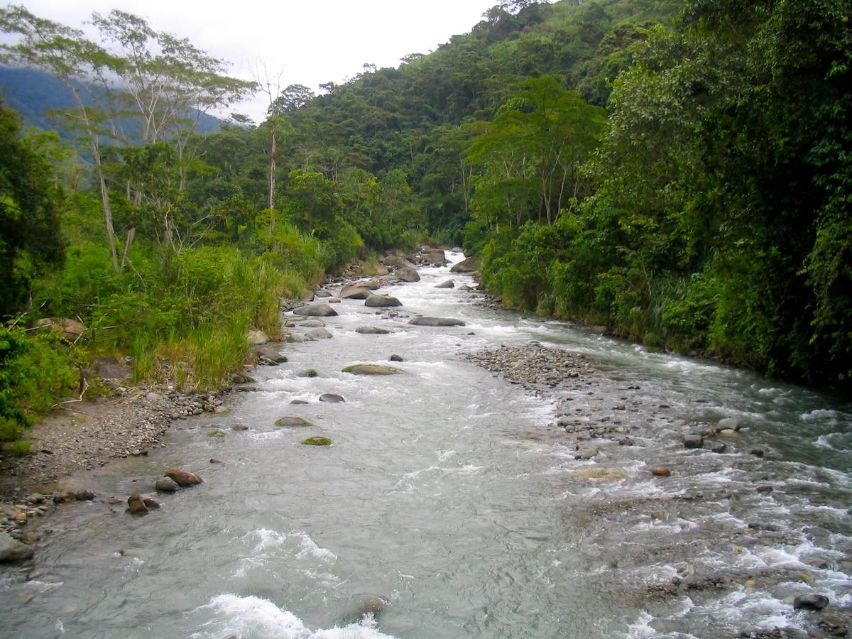 Division River