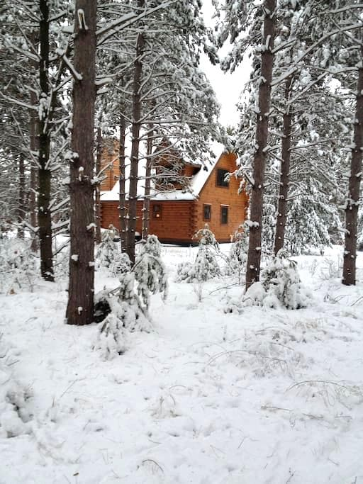 Beautiful log cabin in the woods! - Wautoma