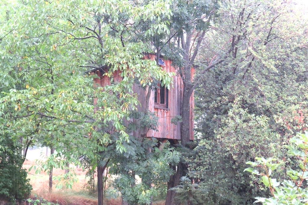 Cabane dans les arbres en balcon sur Serre-Ponçon - Puy-Sanières