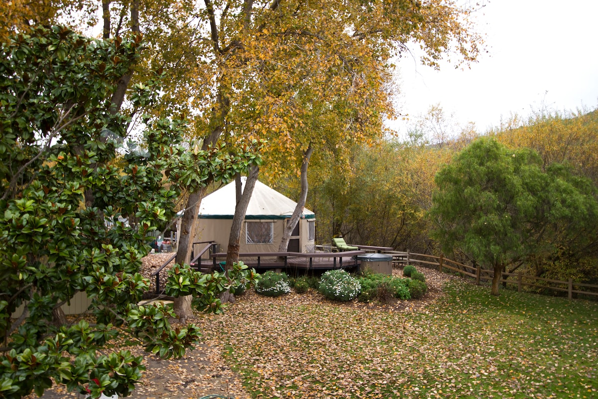 Winter picture of the yurt.
