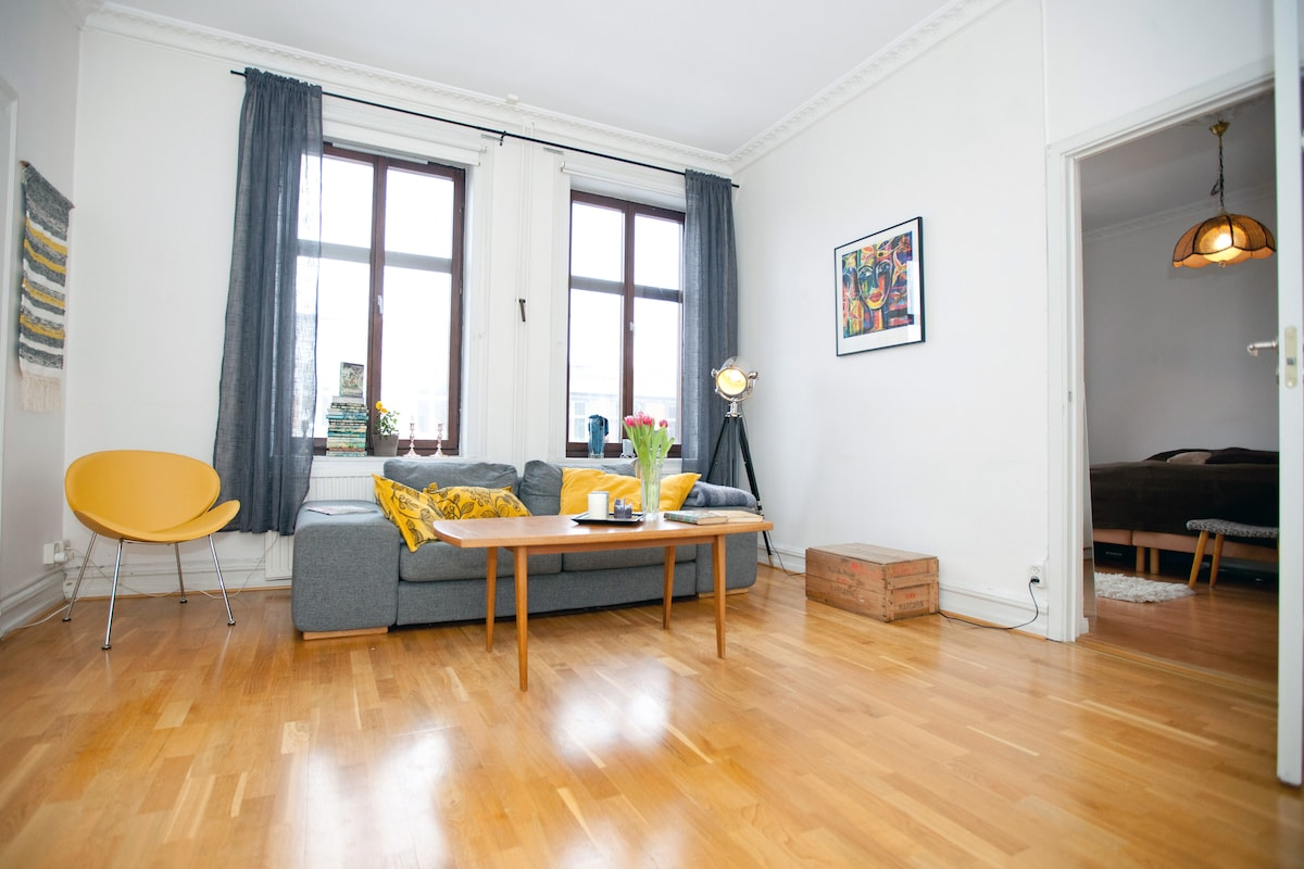 Room in charming central apartment