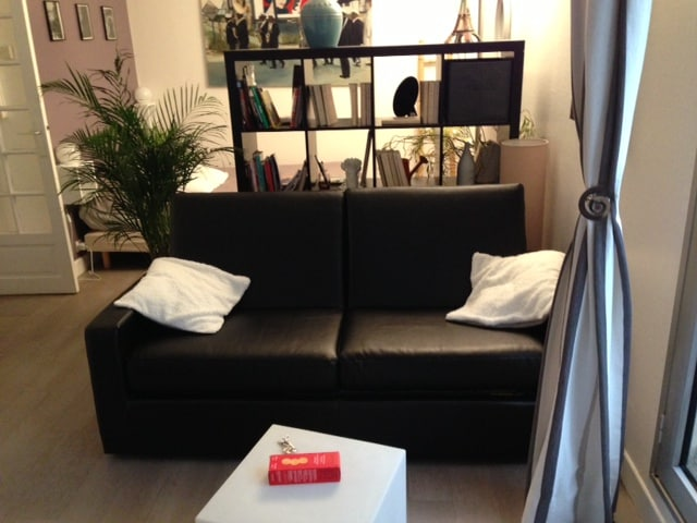 The new sofa-bed (changed at the end of January 2013/ Le nouveau canapé-lit(changé fin janvier 2013)