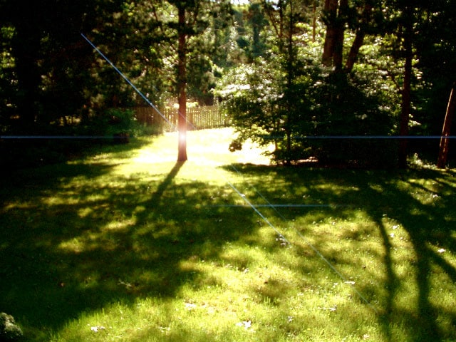 Quiet sunlight peaking through the leaves in the private back yard.