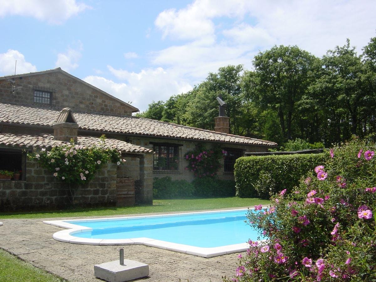 Side yard/private pool