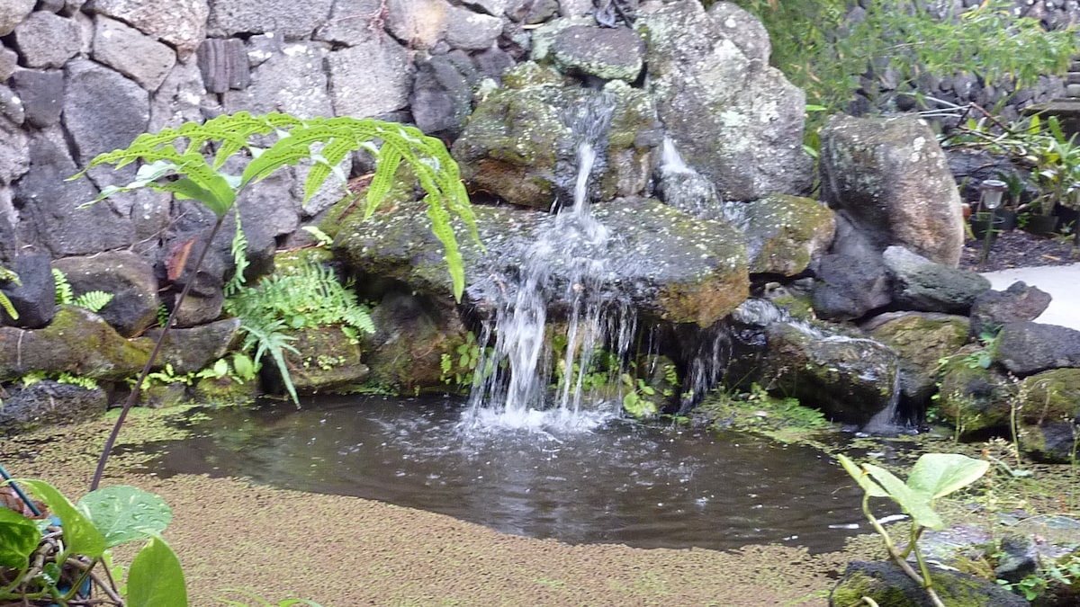 Water Fall at entrance of Maile Land