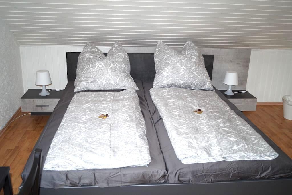 gemütliche 1 Zimmer Wohnung in Innenstadtnähe - Kaiserslautern - Apartment