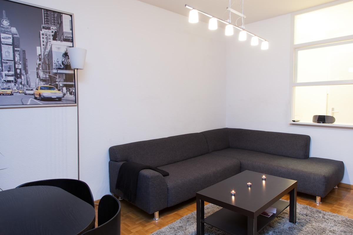 Cozy flat in center Geneva