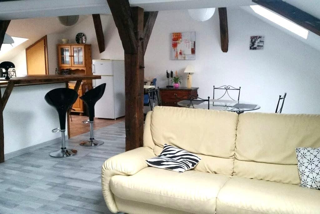 Jolie Appartement de 80m2 proche gare et centre - Châlons-en-Champagne - Byt