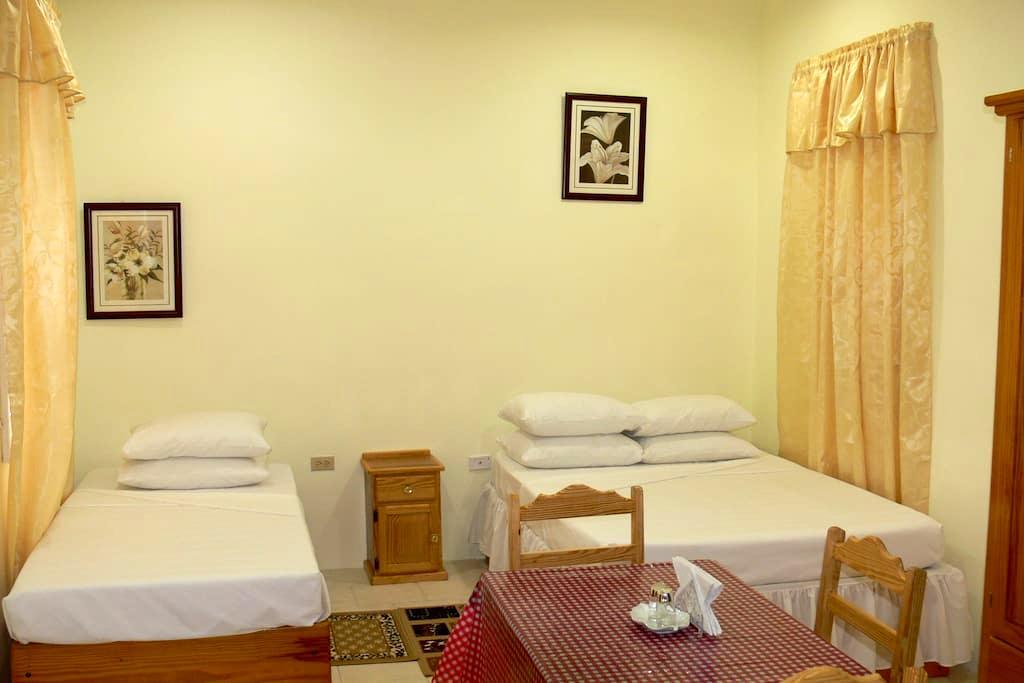 Travel Suites Ltd Apartment 4 - Port of Spain - Apartamento
