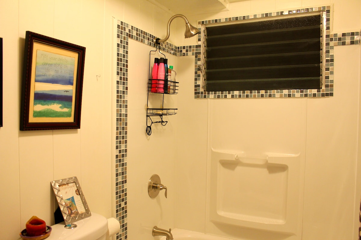 Bathroom Remodeled Feb 2013:  New Bathtub & Shower