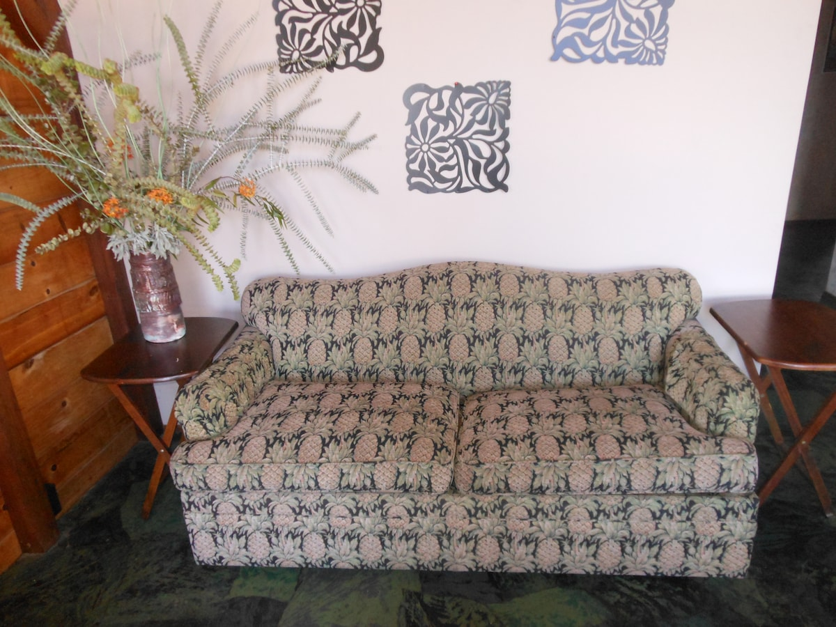 This  couch in the corner of the living room is also a sofa bed