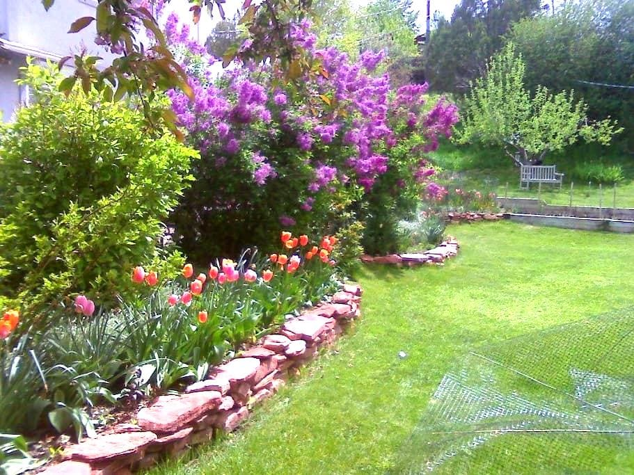 Cozy Gardens & Mountain Views 5 minutes from town. - Glenwood Springs - Maison