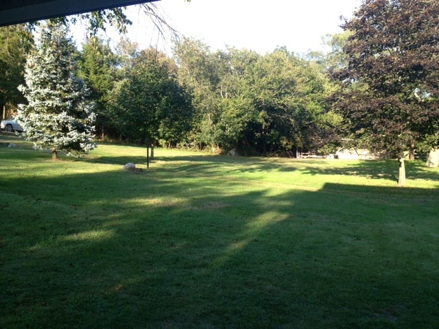 Huge Backyard shared by the private community of our neighbors