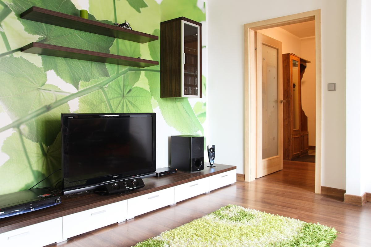 Wooden floors are everywhere and the TV comes with cable, home cinema surround system and blue-ray player.