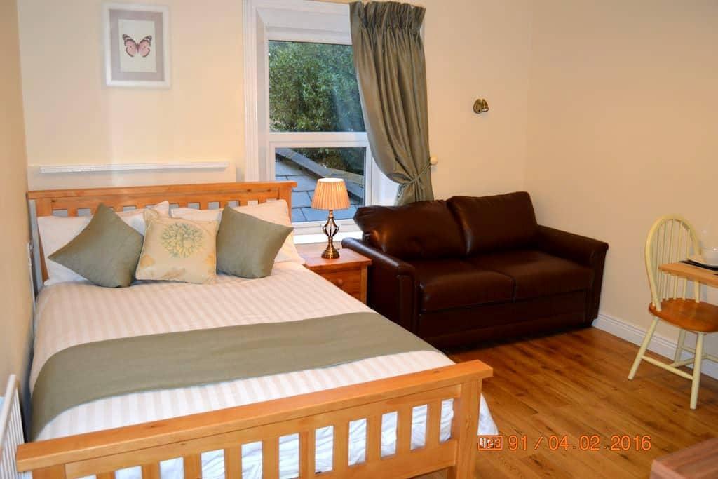 Quiet studio sanctuary for up to 3 people - Dublin - Byt