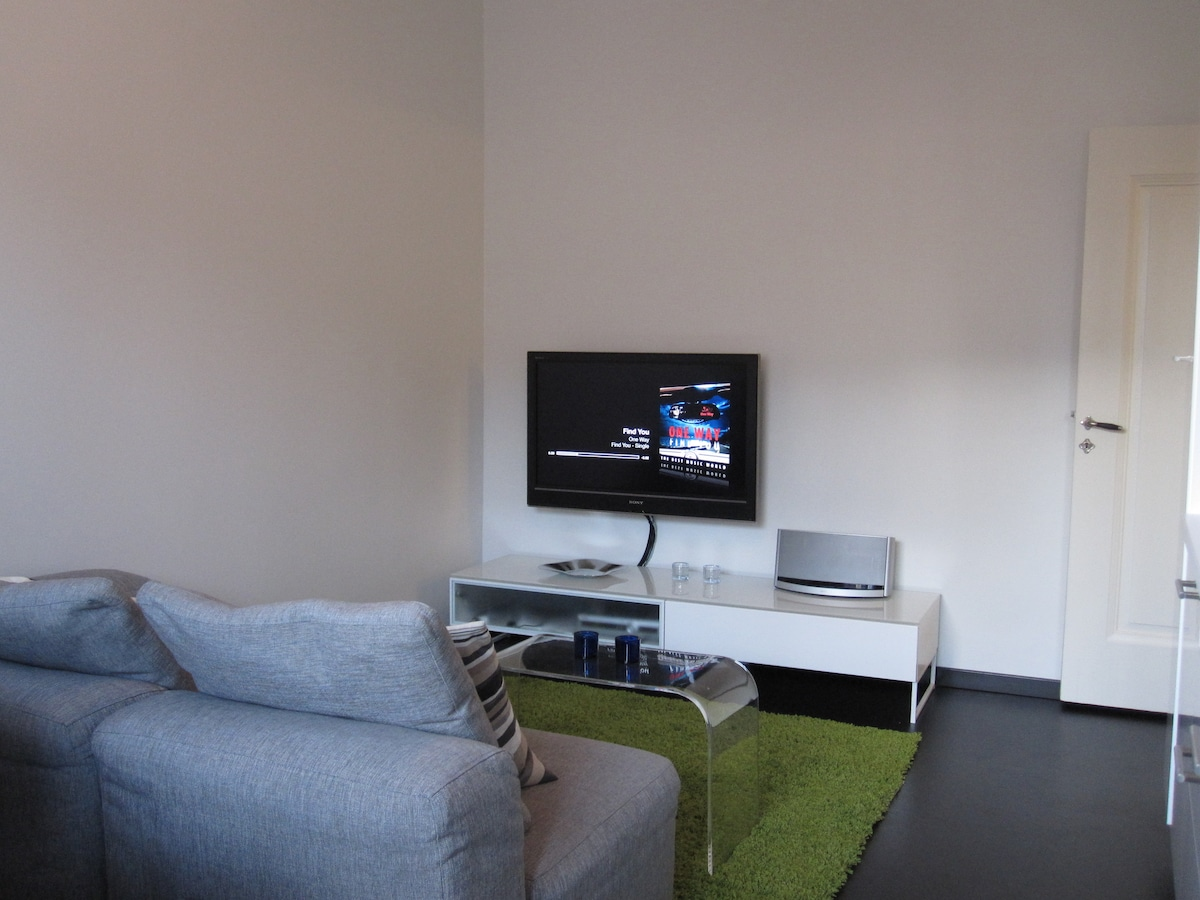 """The Room: Sofa, Sofa Table, Sony 40"""", Apple-TV and Bose Soundock 10. The door leads to the entrance."""