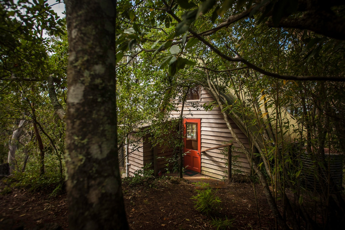 The cabin/treehouse