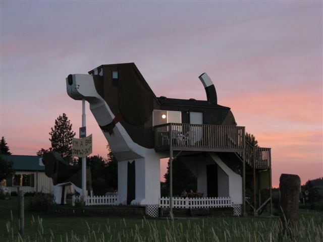 Summer sunset at Dog Bark Park