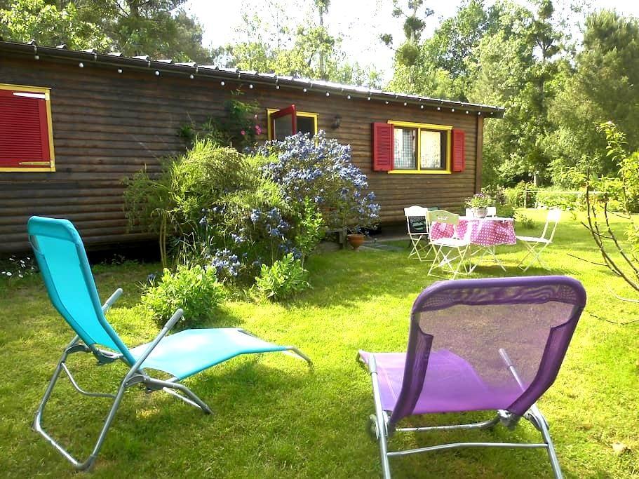 bungalow bois en lisière de forêt - Montigné-lès-Rairies - Domek parterowy