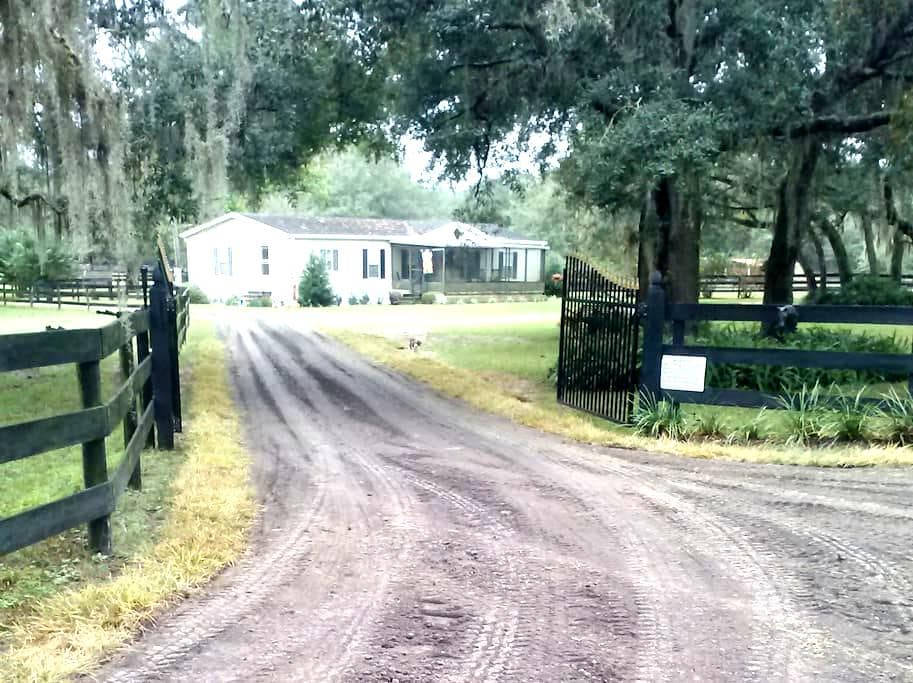 Welcome to Hart Horse Farm! - Brooksville - Casa
