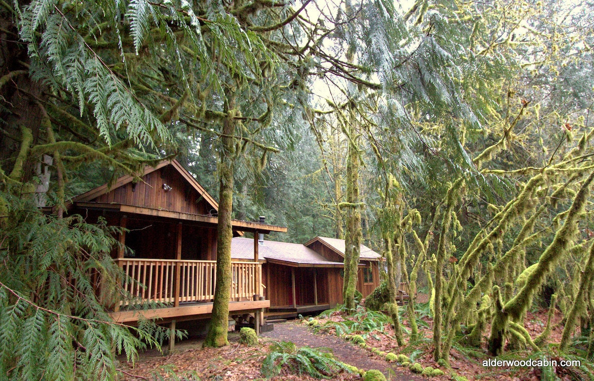 rent vacation overlooking rental oregon river the br cabins shady for in vrbo or southern cabin cove rogue lodge pin