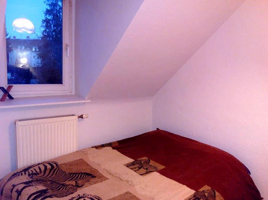 Une chambre dans un appartement F2 - Mulhouse - Appartement