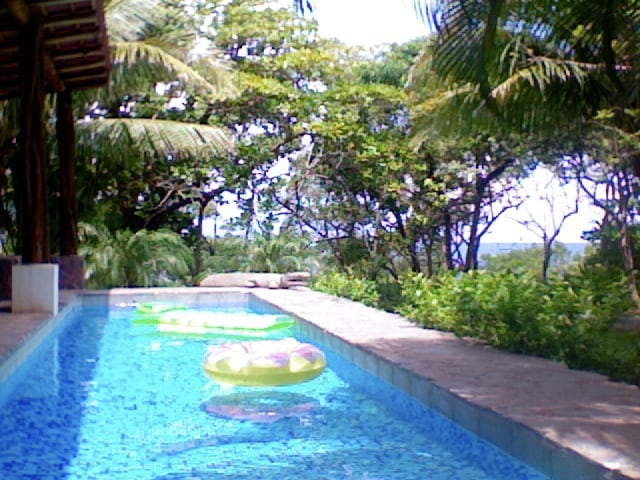 Shady pool area with ocean horizon