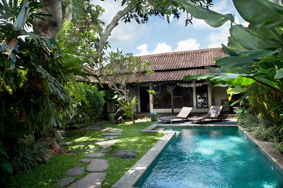 7 meter plunge pool set ina garden shaded by mango, frangipani, and other trees. (shared)
