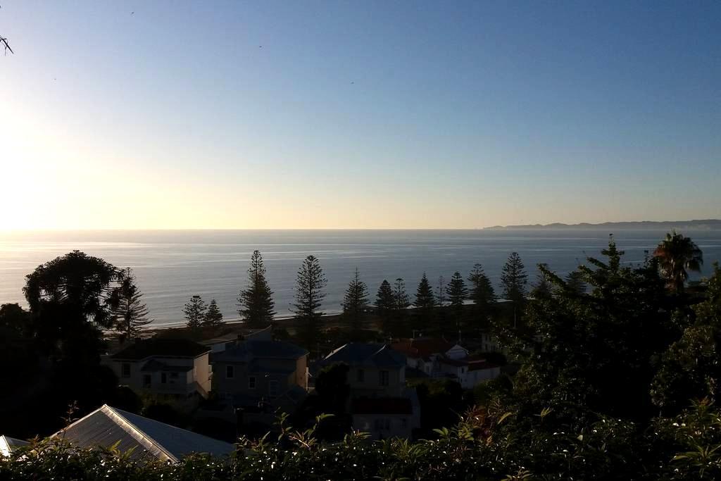 Magnificent sea views historic home - Napier