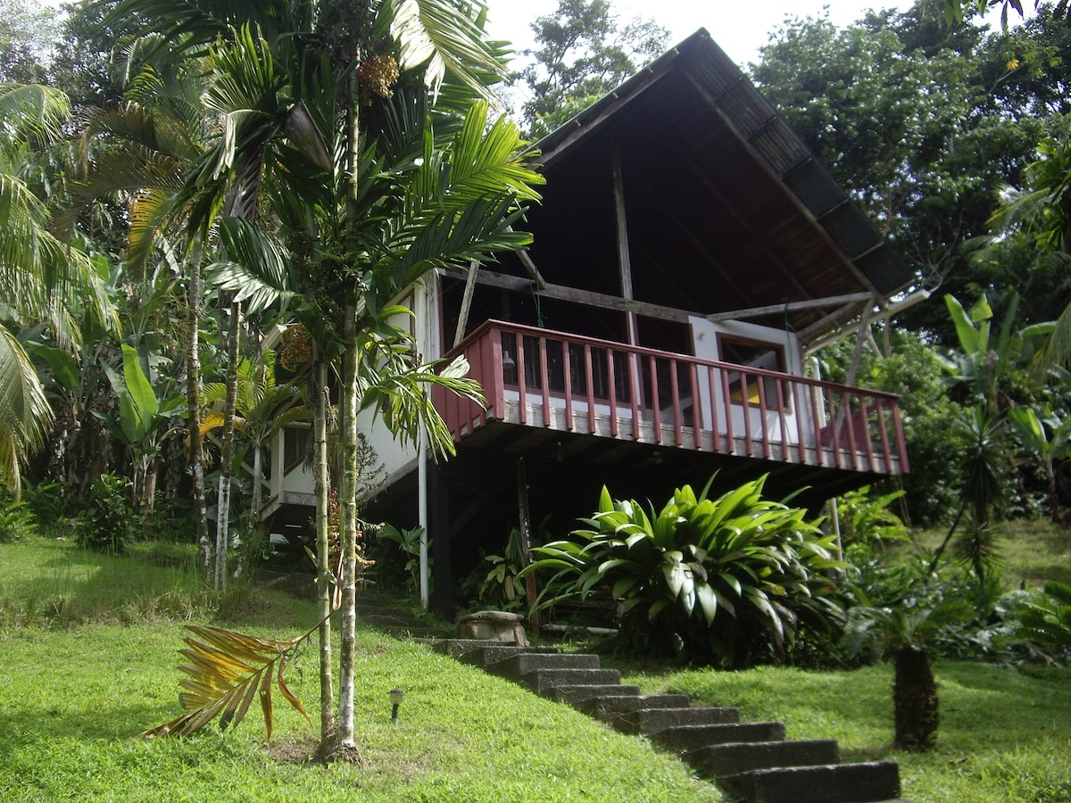 """Jungle Deluxe"" cabin"