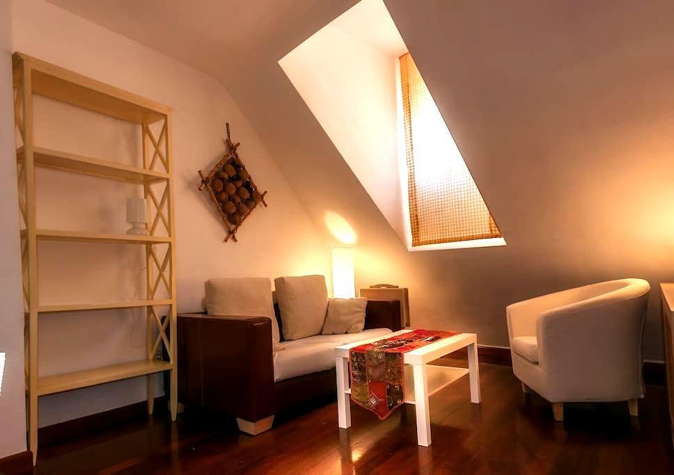Céntrica buhardilla con encanto - Valladolid - Apartamento