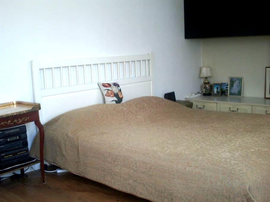 room with a private shower near Wembley Park tube - Wembley - Σπίτι