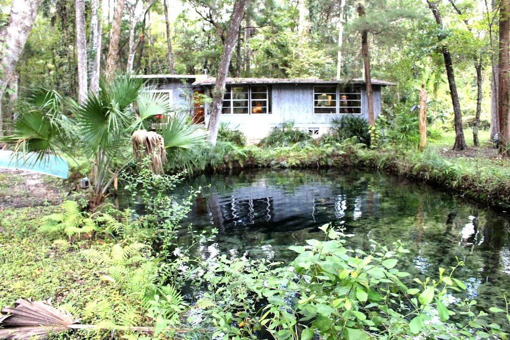 Lagoon Cabin on Homossasa River - Homosassa - Hus