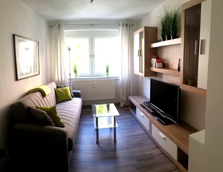 Quiet Apartment in the pedestrian Areain Pforzheim - Pforzheim