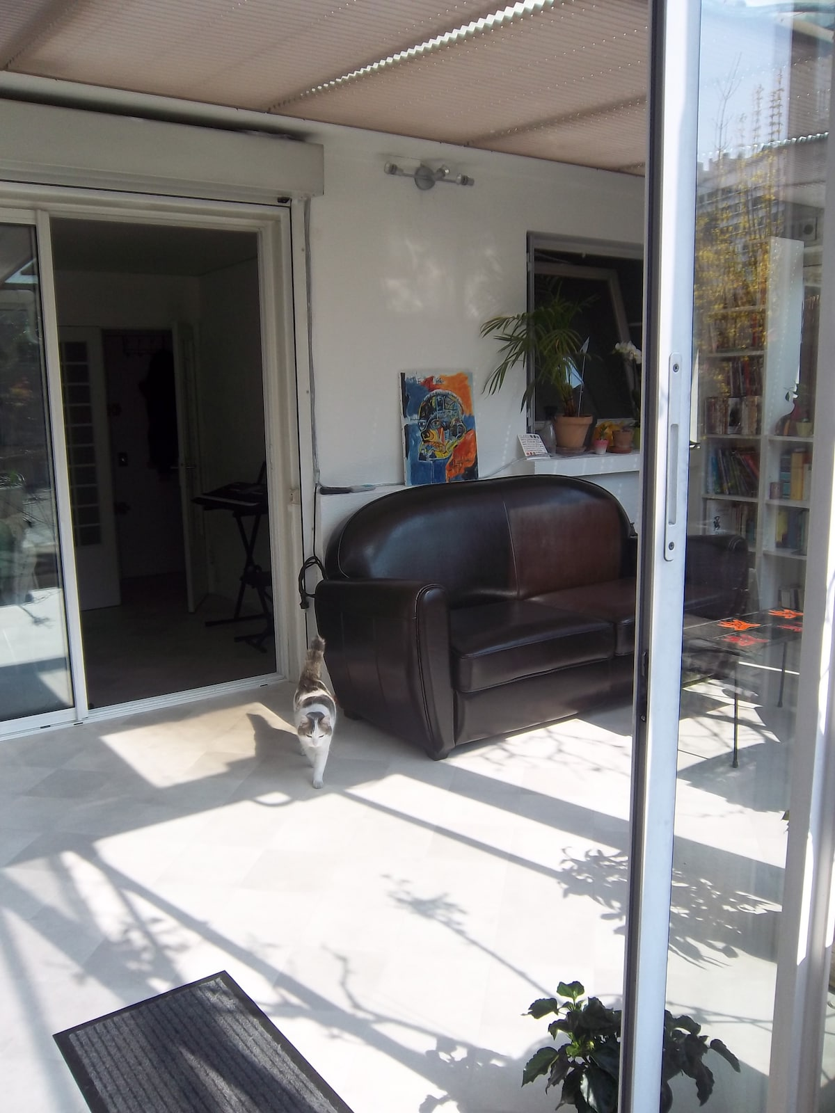 the veranda, and the convertible couch, with chatouille, the cat :-)