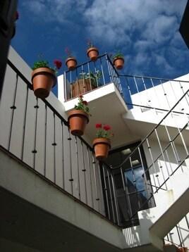 Plants cascade down the atrium on each floor.