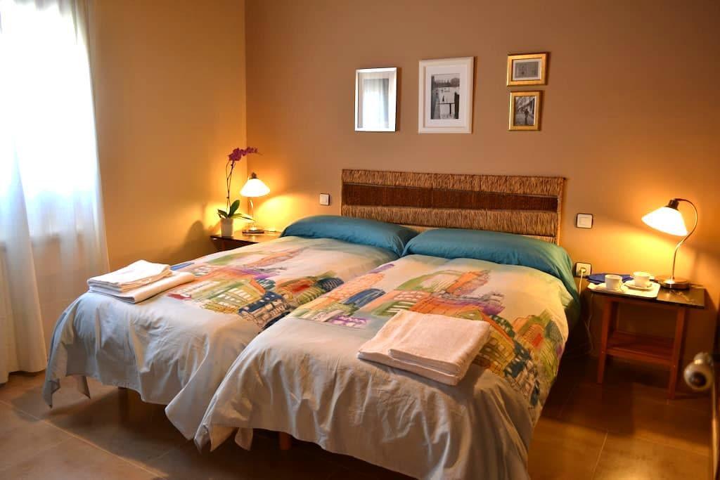 CANTAMORA APART 4pax RIBERA DUERO - Pesquera de Duero - Apartment