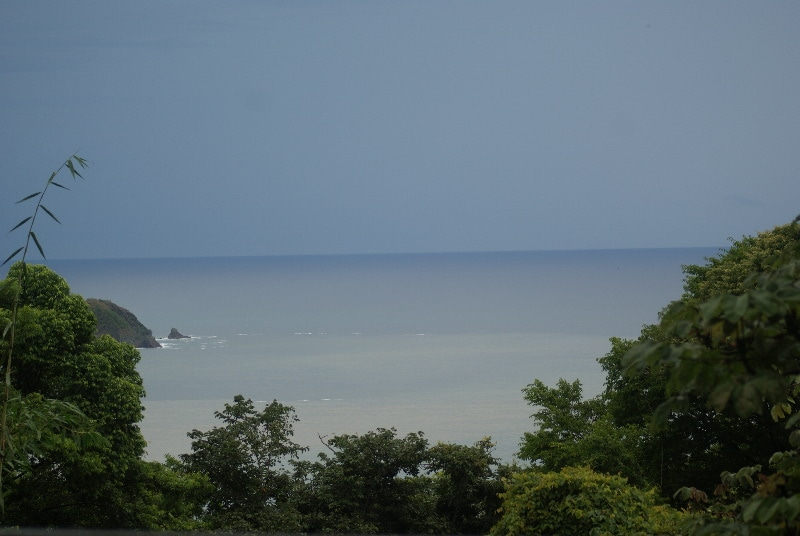 Jungle View and Ocean View from our Pacific Terrace