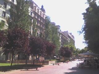 Avenue Mistral, piétonne