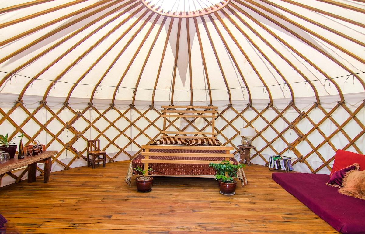Stunning Yurt, near Byron Bay