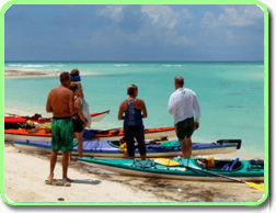 Kayaks available to rent, this is a picture of one of many meet ups on (website hidden)
