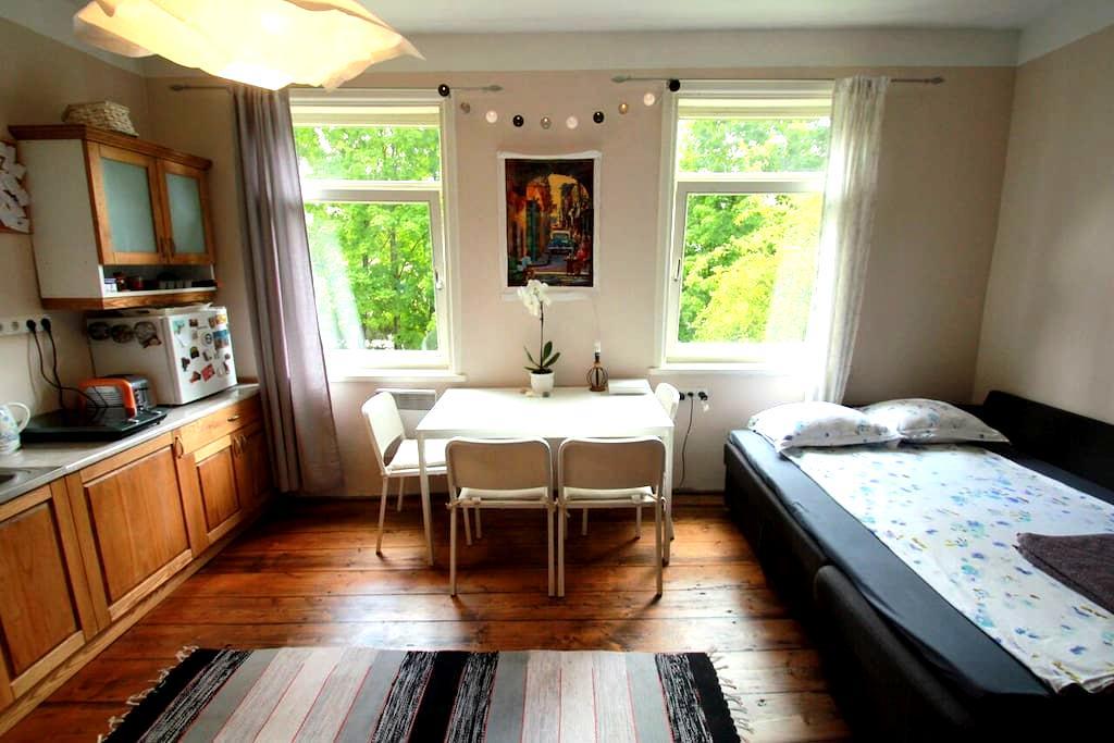 Sunny Central Studio - Tartu - Apartamento