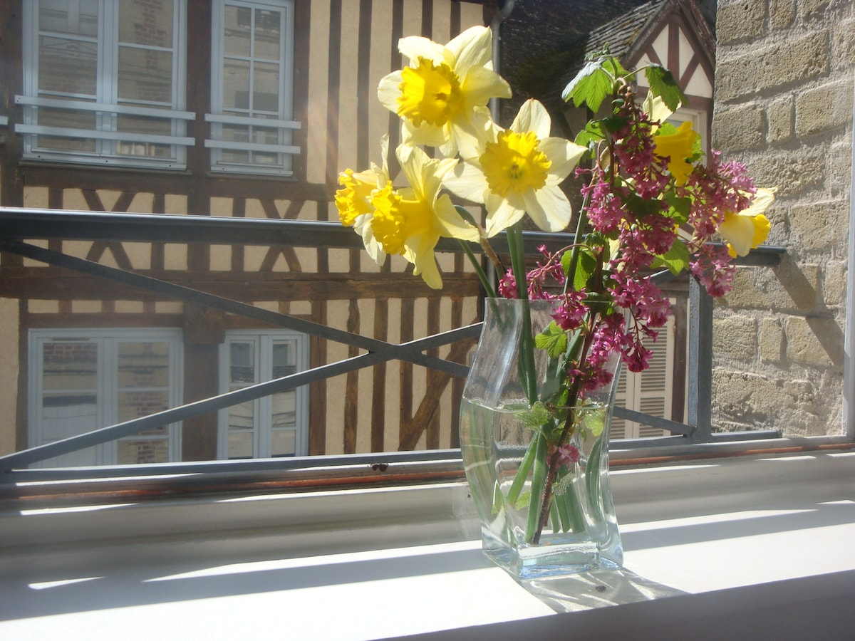 Charming flat in Honfleur /Normandy