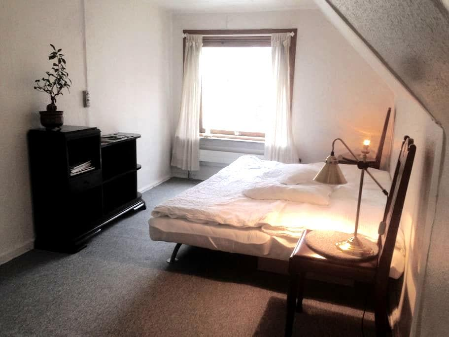 Large room in Odense center - Odense - 獨棟