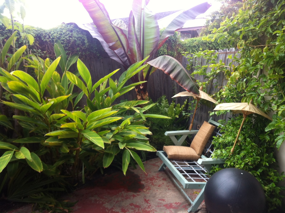 Tropical plants, swinging hammock, and waves crashing in the background