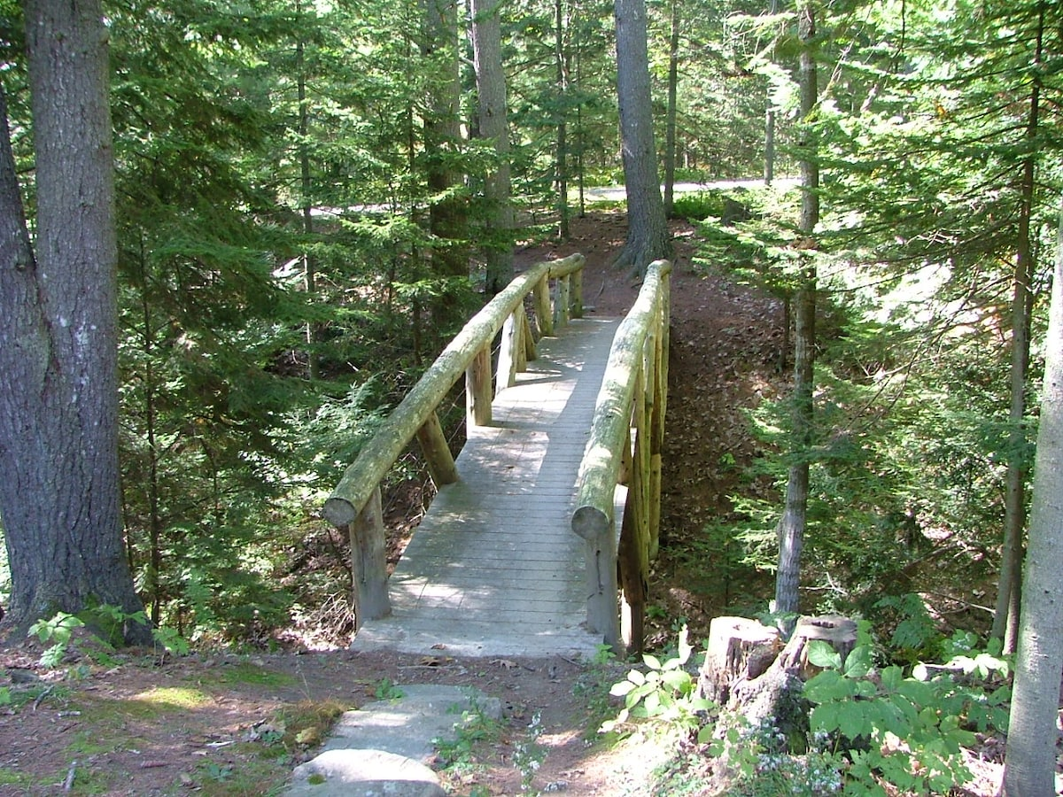 The bridge over a ravine connects the cottage to the owner's house and property.  Access to the water and dock begins with a walk over this bridge and down to the water.