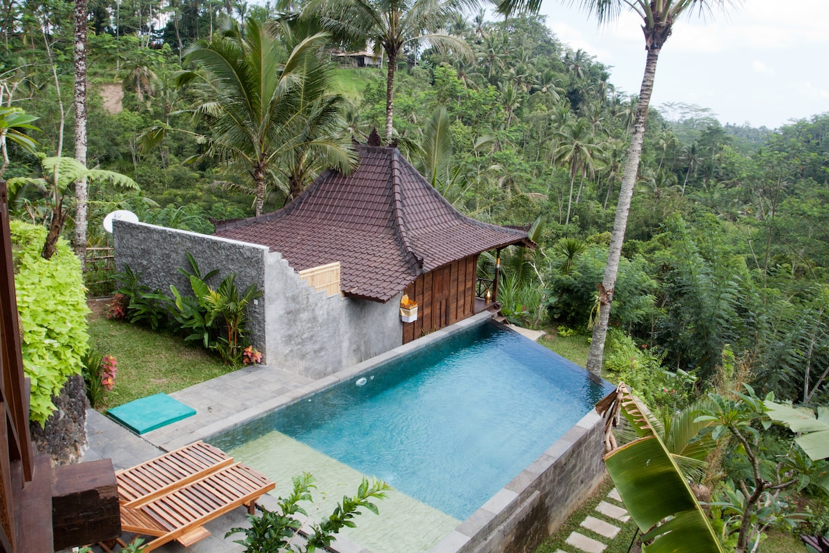 DD Ubud Villa- Wooden House Sabit